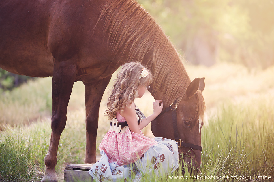 beautiful girl and her horse